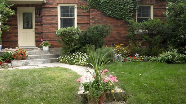 Komplette Gartenpflege